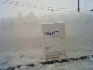 本格的な雪になりました